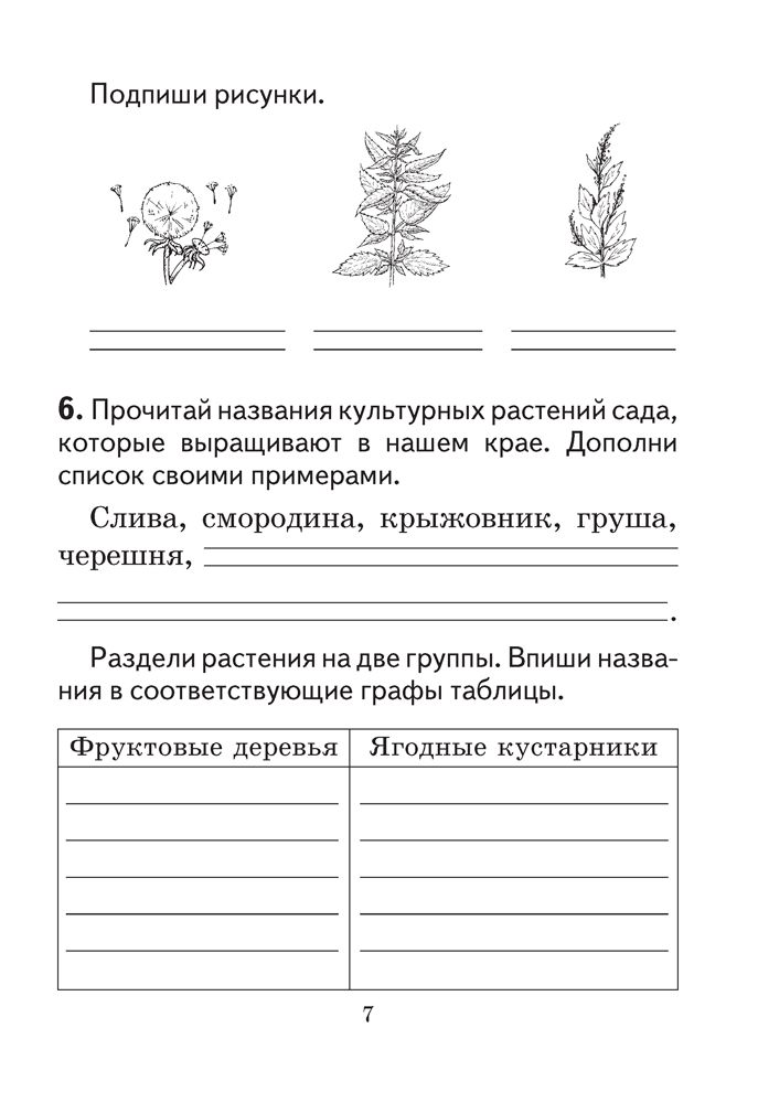 Решебник по рабочей тетради 5 класса я.н.яцкевич
